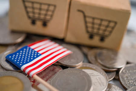 Stack of coins, shopping cart box with USA America flag, finance concept. 免版税图像