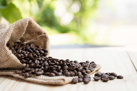 Coffee beans pour out of the sack on the wooden floor in morning.