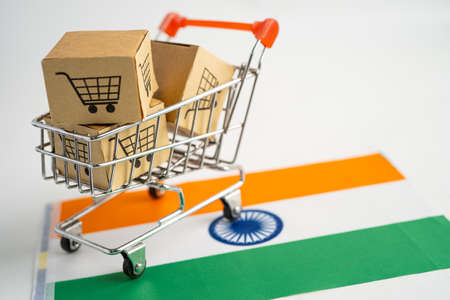 Box with shopping cart logo and India flag, Import Export Shopping online or eCommerce finance delivery service store product shipping, trade, supplier concept.