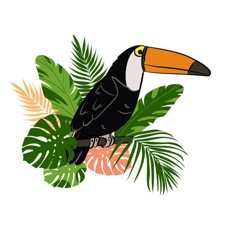 Illustration with tropical bird and tropical leaves. Toucan on the branch. Isolated on a white background. Can be used for web, design of cards and banners, printing on fabrics and paper.