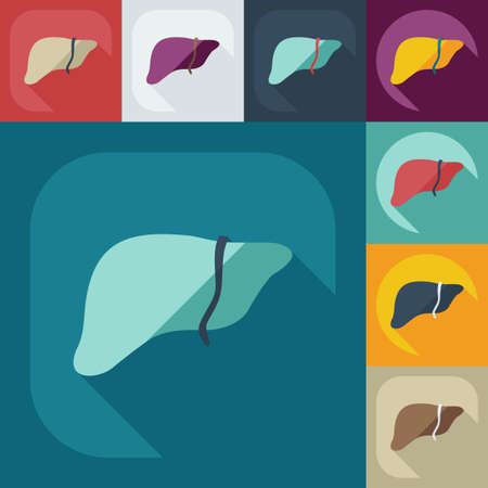 Flat modern design with shadow icons liver Vector