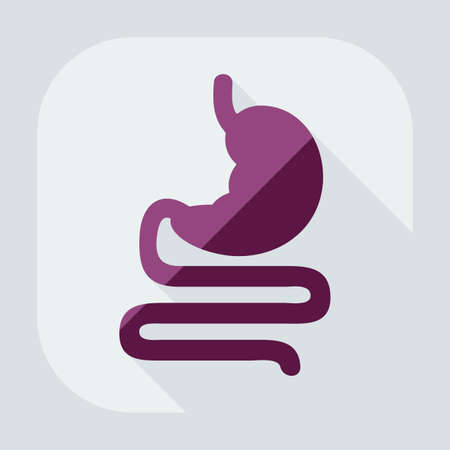colonoscopy: Flat modern design with shadow icons stomach Illustration