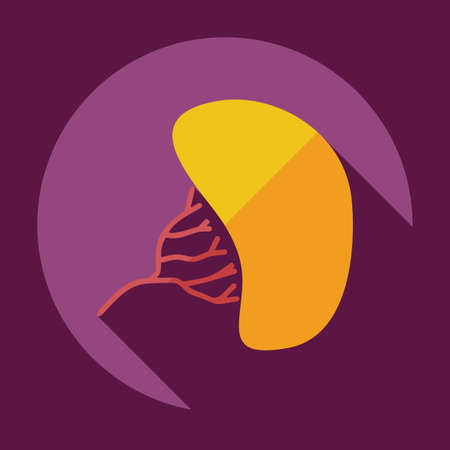 fatty liver: Flat modern design with shadow liver medical icon Illustration