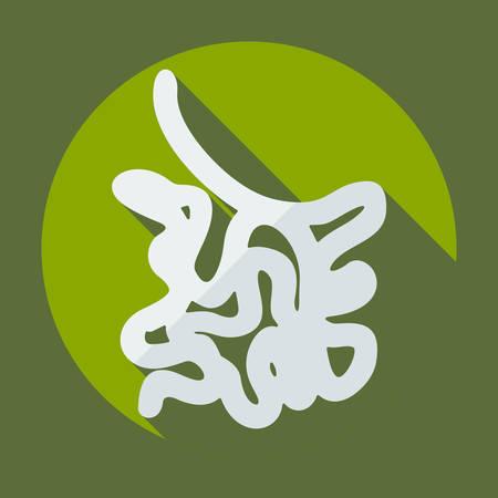 small intestine: Dise�o moderno plana con sombra iconos intestino delgado