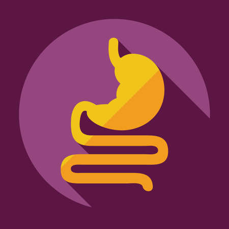 Flat modern design with shadow icons stomach Ilustração