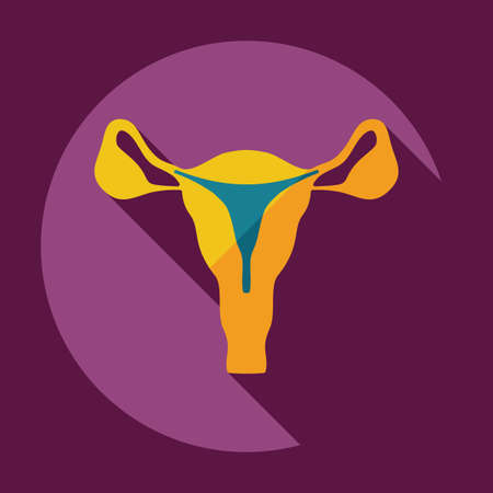 woman vagina: Flat modern design with shadow icons uterus
