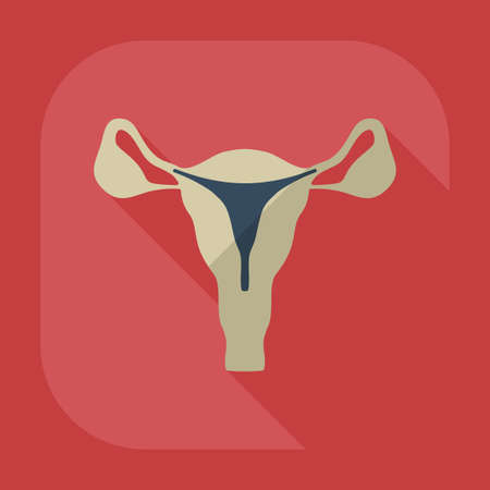 fallopian: Flat modern design with shadow icons uterus