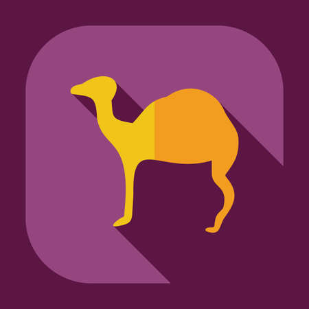 assemblage: Flat concept, set modern design with shadow camel Illustration