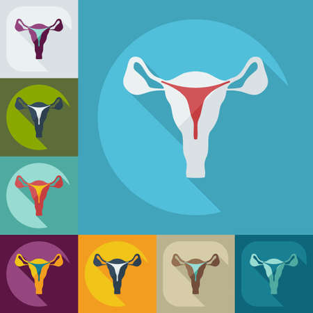 Flat modern design with shadow icons uterus Banco de Imagens - 43656507