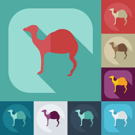 nomad: Flat concept, set modern design with shadow camel Illustration