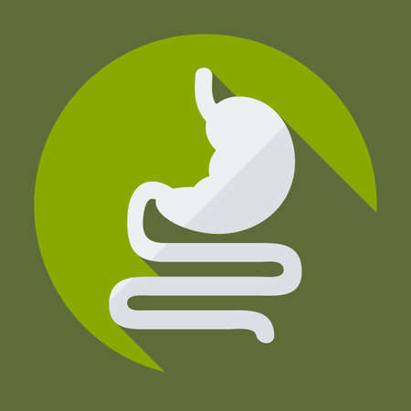 Flat modern design with shadow icons stomach Illustration