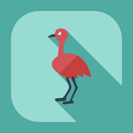emu: Flat modern design with shadow icons ostrich