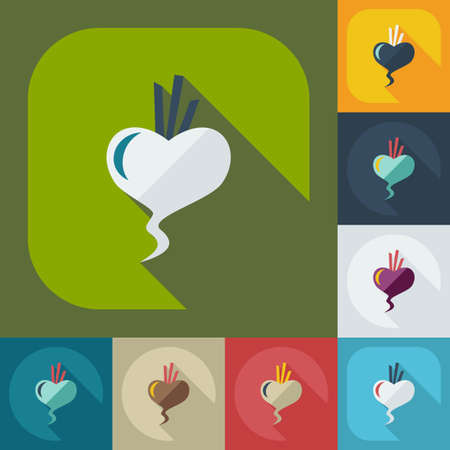 beet: Flat modern design with shadow icons beet