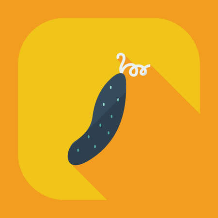 cucumber: Flat modern design with shadow icons cucumber