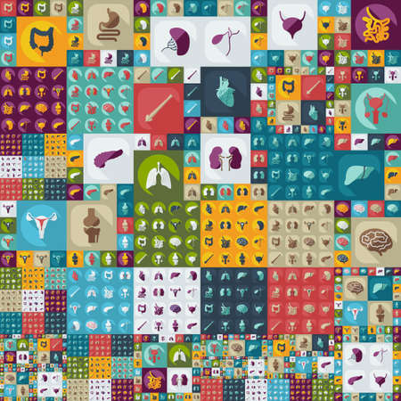 anatomía: única de mega asamblea de iconos conjunto de órganos humanos medicina Vectores