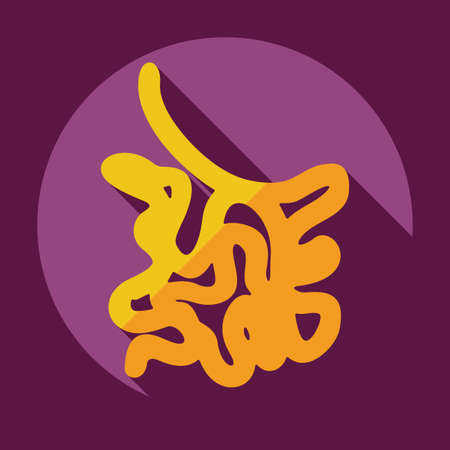 villi: Flat modern design with shadow icons small intestine