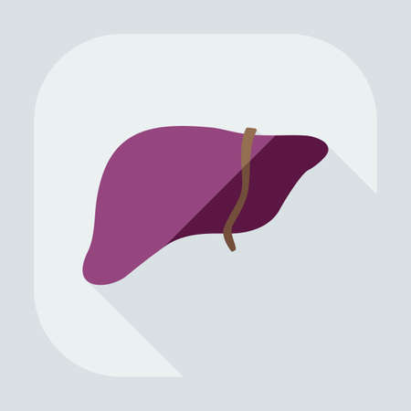 fatty liver: Flat modern design with shadow icons liver