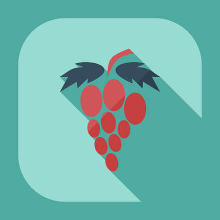 viticulture: Flat modern design with shadow icons grapes Illustration
