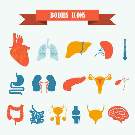 large bowel: multicolored icons with tape on the topic bodies Illustration