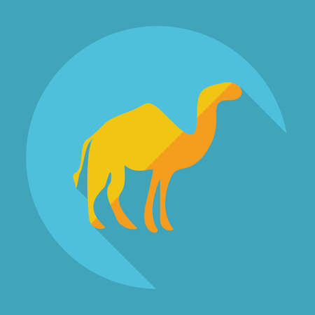 nomad: Flat modern design with shadow camel