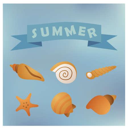 kind of sea shells, sticker vector silhouette illustration