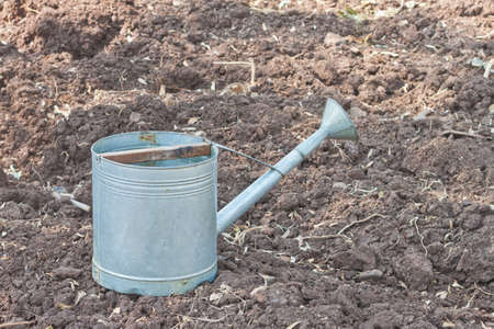 watering pot: Rural style metal watering pot