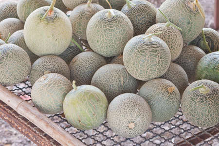 stow: Stow of sort out low grade Japanese melons Stock Photo