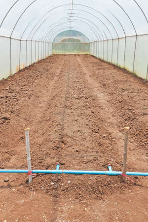 Plot bed preparation of a cultivation greenhouse