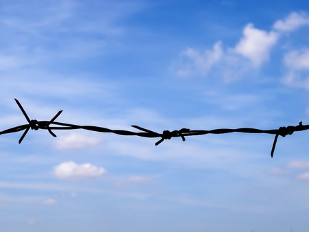 deterrent: deterrent freedom by thorn wire barricade on blue sky
