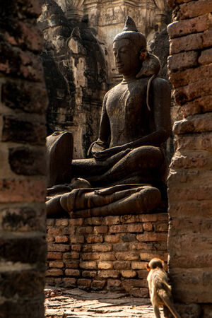 mystic place: The monkey looking statue buddhism in old Thai temple  Stock Photo