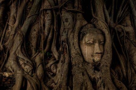 Statue de tête de Bouddha