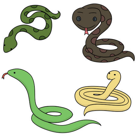 vector set of snake Illustration