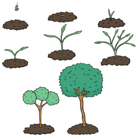 tree planting: vector set of planting tree