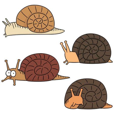 mollusc: vector set of snail Illustration