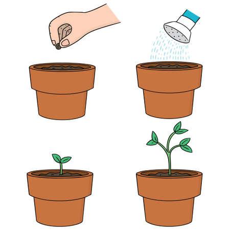 plant tree: vector set of planting tree