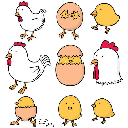 cockscomb: vector set of chicken and egg