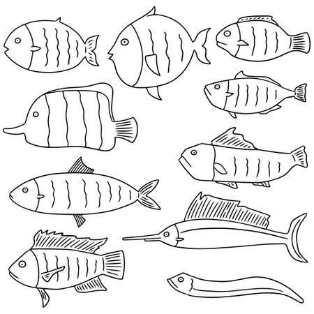 saltwater eel: vector set of fish