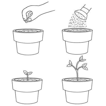 planting tree: vector set of planting tree