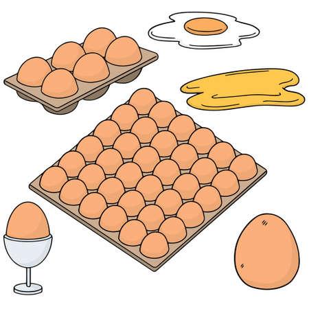 vector set of eggs