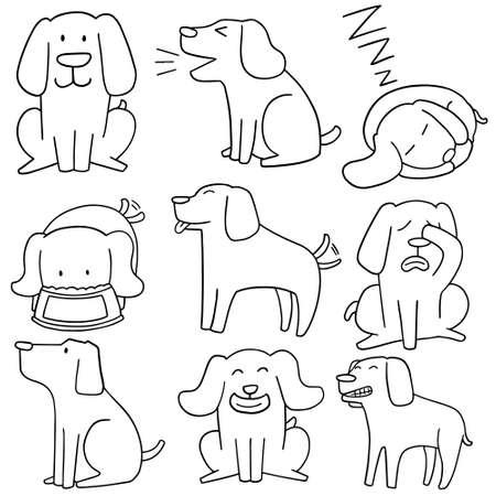 labrador: vector set of dog, labrador retriever Illustration