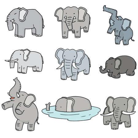 illustrates: vector set of elephant Illustration