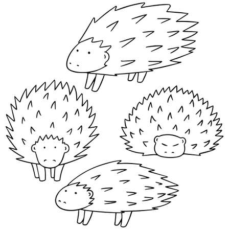 vector set of porcupine