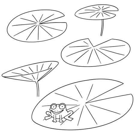 Vector set of lotus