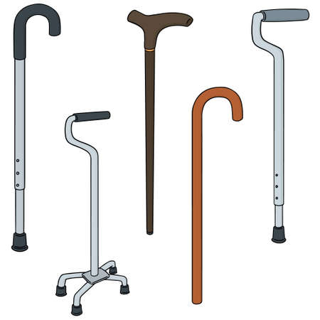 Colorful cartoon vector illustration set of walking stick