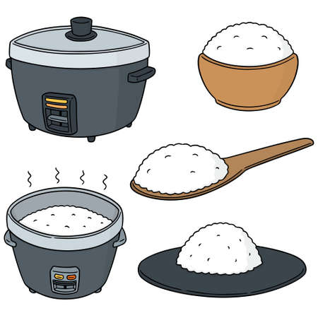 vector set of rice isolated on white background.