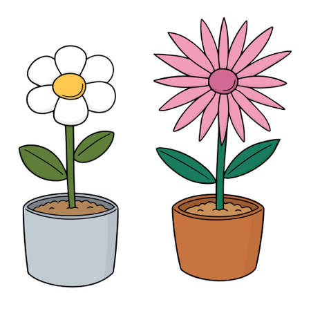 vector set of flowers in a pot