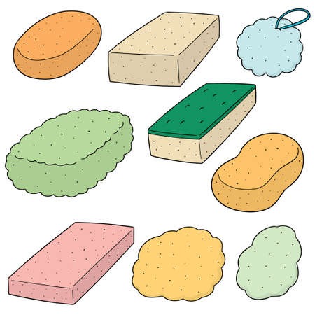 Vector set of sponge on white background illustration.