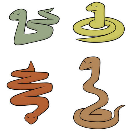 vector set of snakes