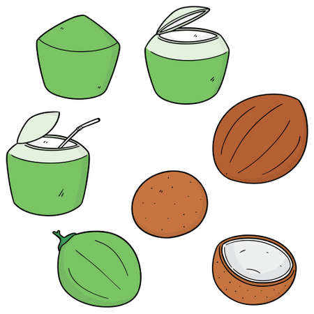 vector set of coconut Vectores