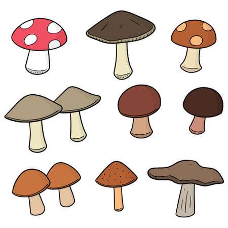Vector set of mushrooms